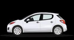 2009 Peugeot 207 image